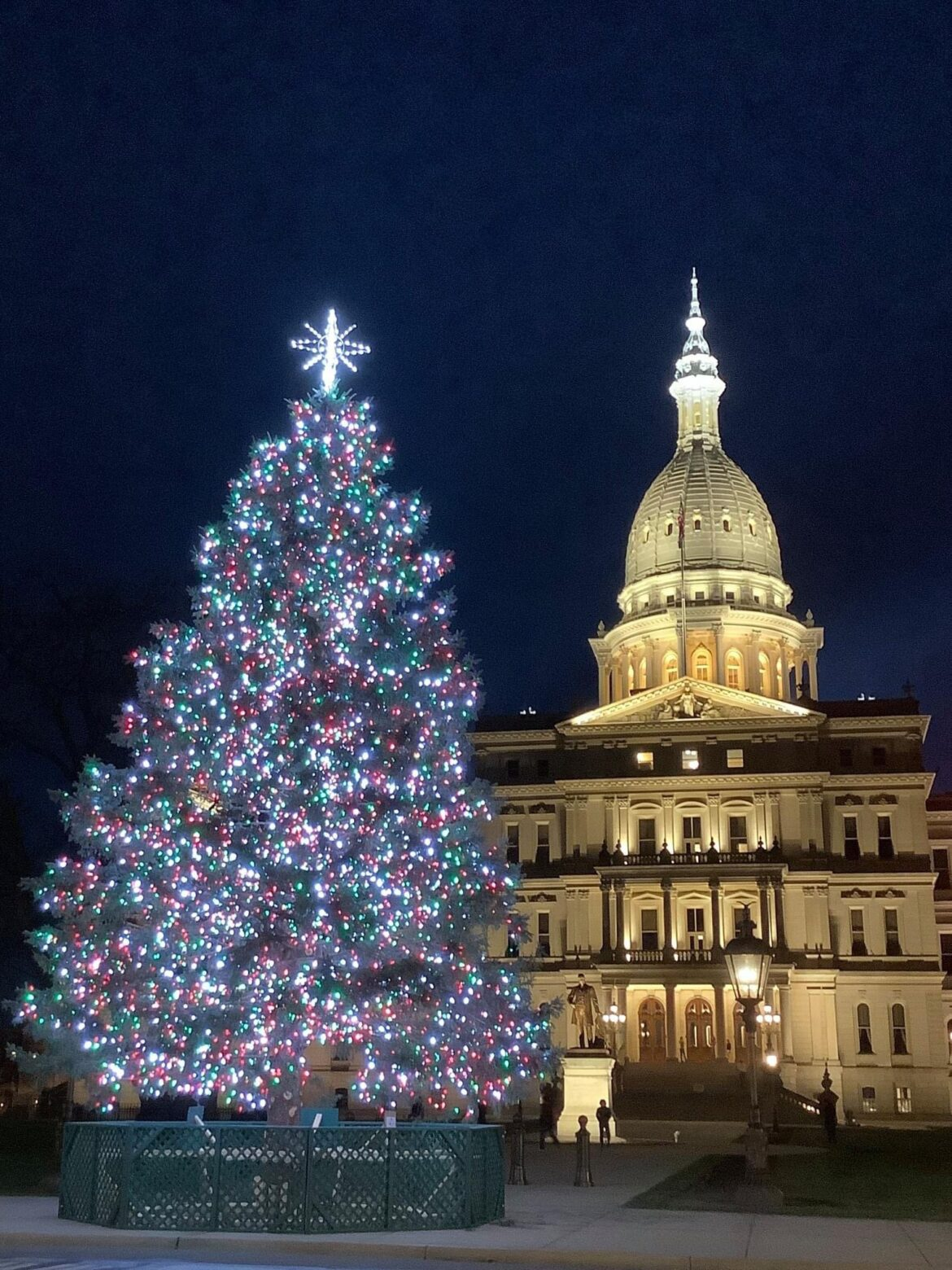 Governor Whitmer Proclaims December as Michigan Christmas Tree Month