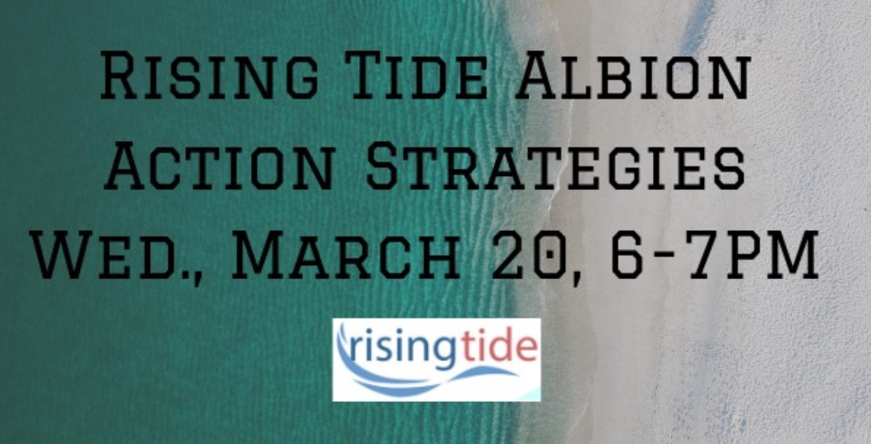 Project Rising Tide Albion's Action Strategies Meeting. March 20, 2019