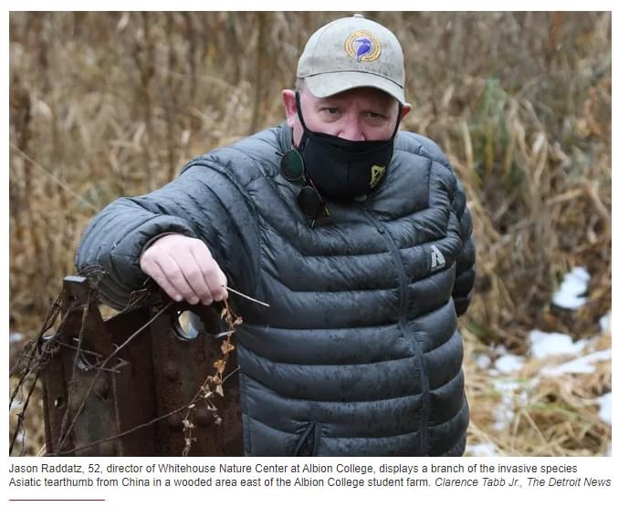 Michigan seeks help tracking these two invasive species