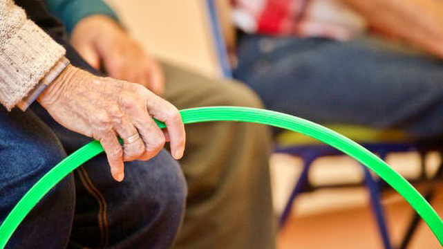 Elder and Vulnerable Adult Abuse Prevention Services